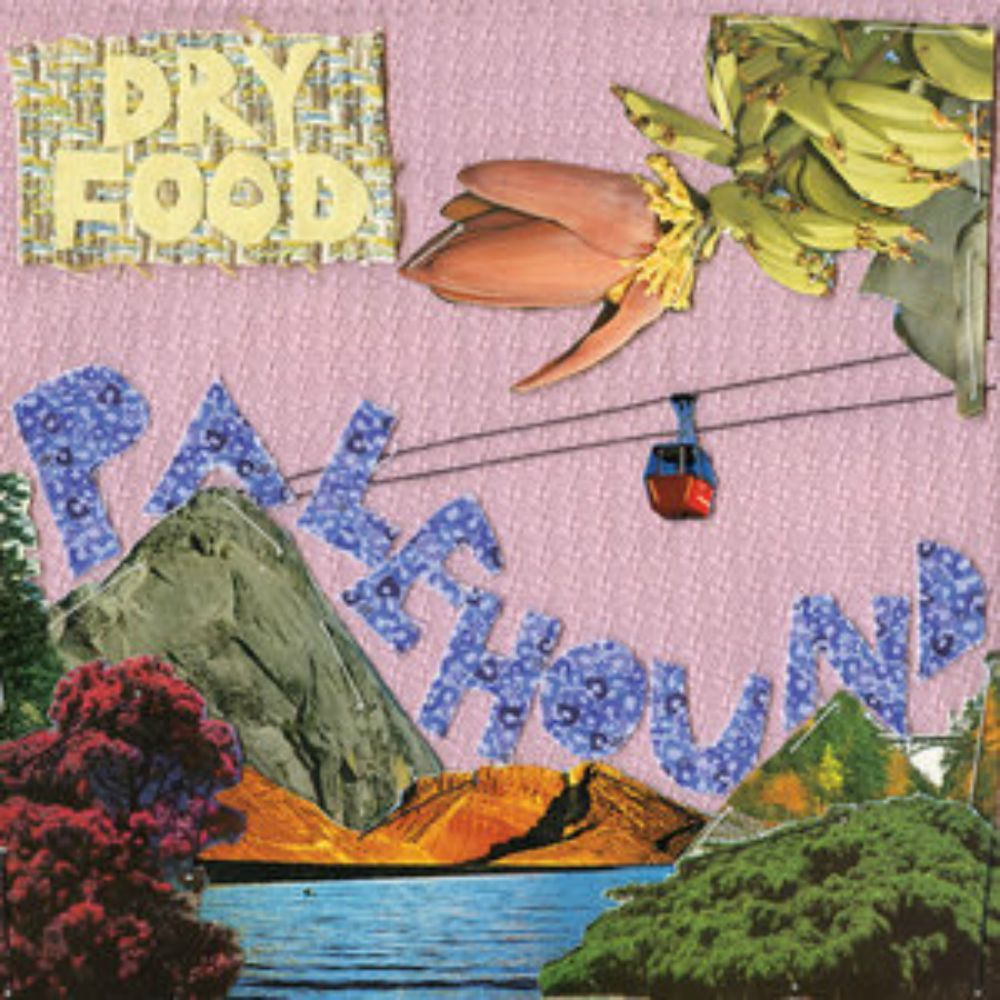 "ALBUM REVIEW: Palehound ""Dry Food"""