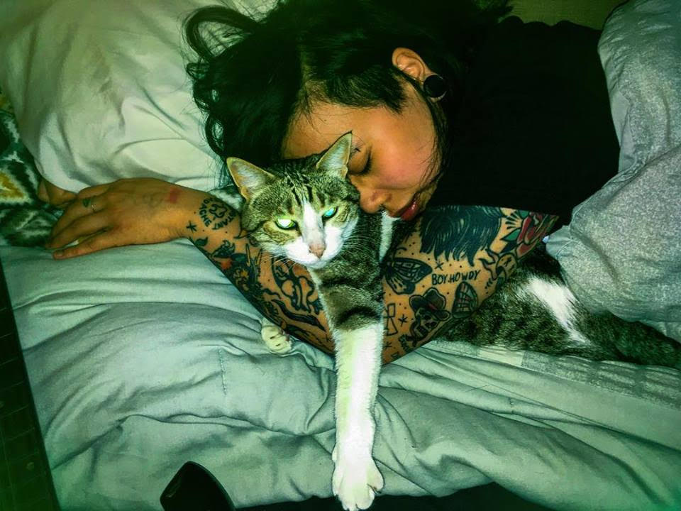 PET POLITICS: Meet Sundance Kidd, Brooklyn's Rock 'n' Roll Cat Sitter